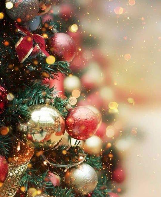 Kerstwens 2018 De Berenkuil